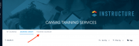 Canvas Training Services